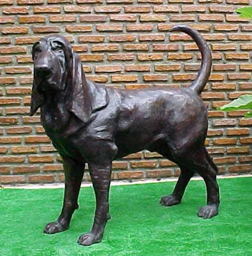 Bronze Bloodhound Statue - PA A-1055