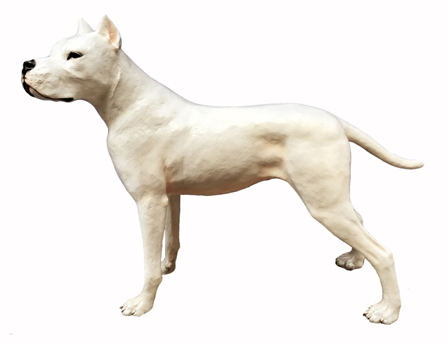 Bronze Dogo Argentino Statue - DK 2717