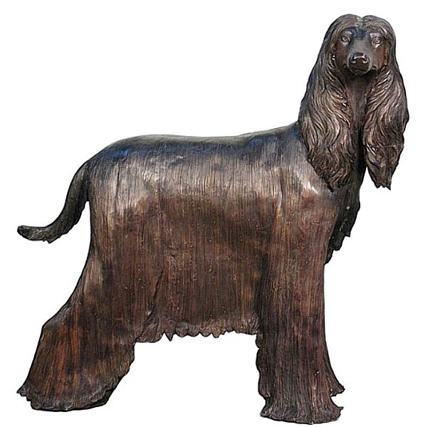 Bronze Afgan Statue - AF 50424